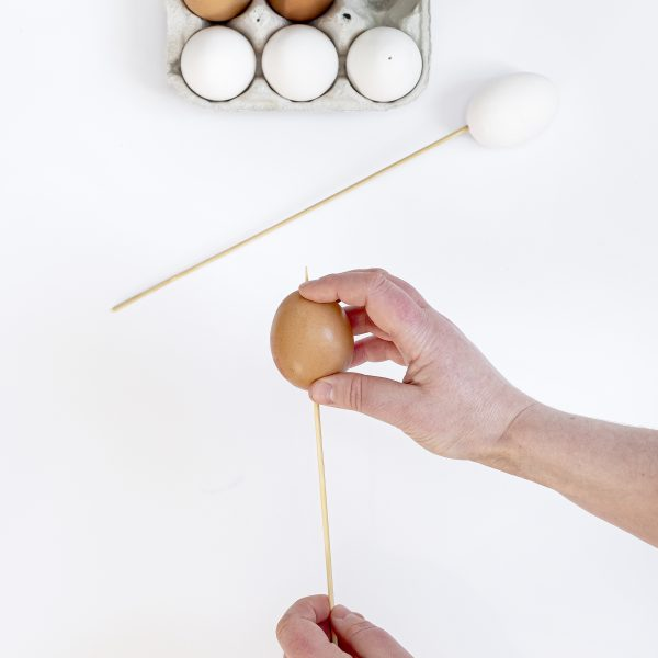 placing the egg shell on a wooden skewer